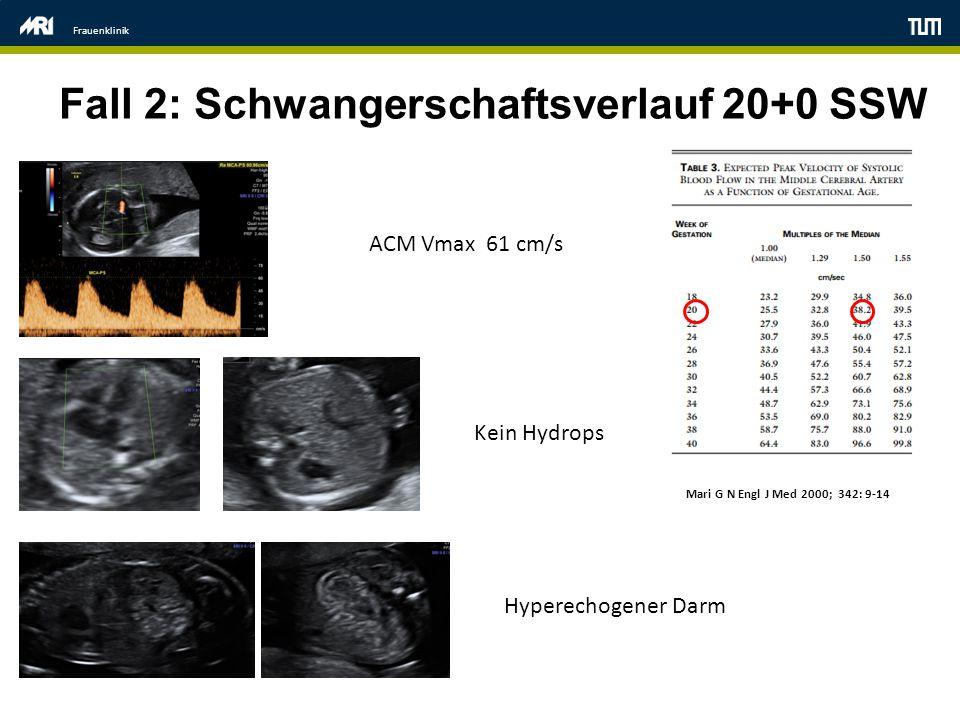 Fall 2: Schwangerschaftsverlauf 20+0 SSW
