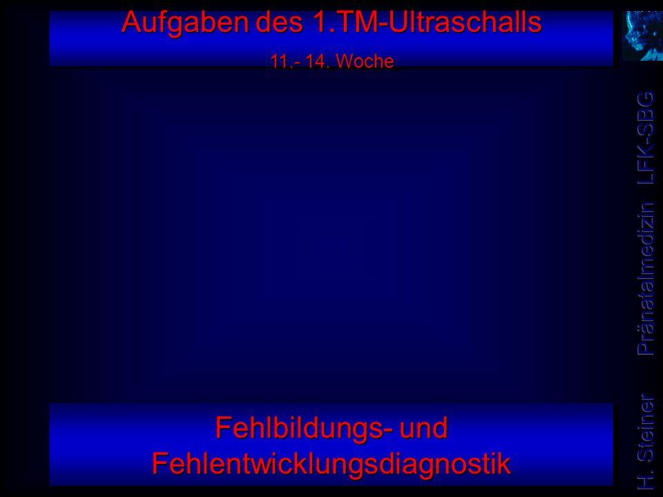 Aufgaben des 1.TM-Ultraschalls 11.- 14. Woche