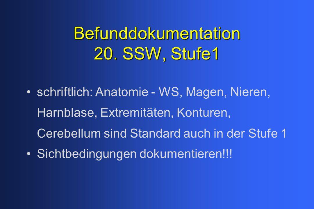 Befunddokumentation 20. SSW, Stufe1