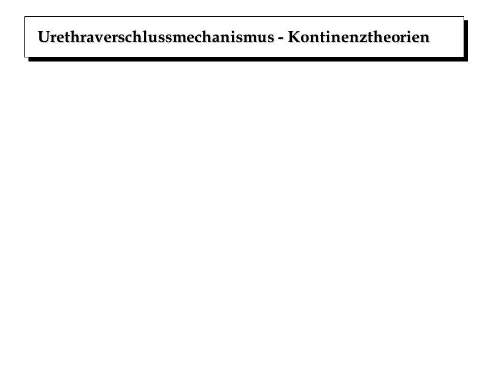 Urethraverschlussmechanismus - Kontinenztheorien