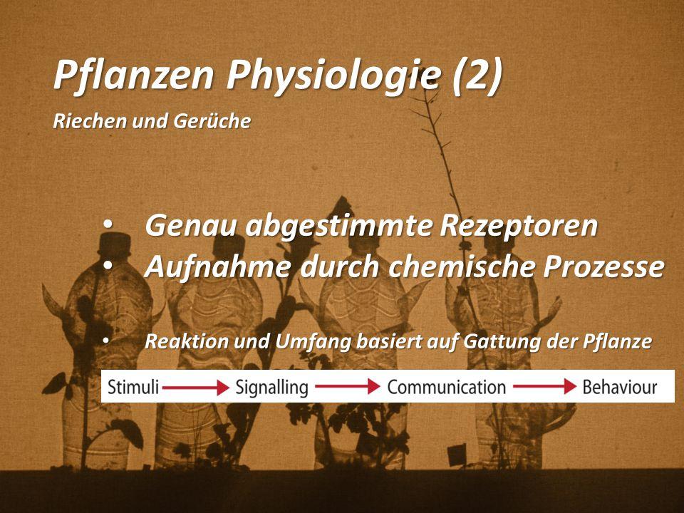 Pflanzen Physiologie (2)