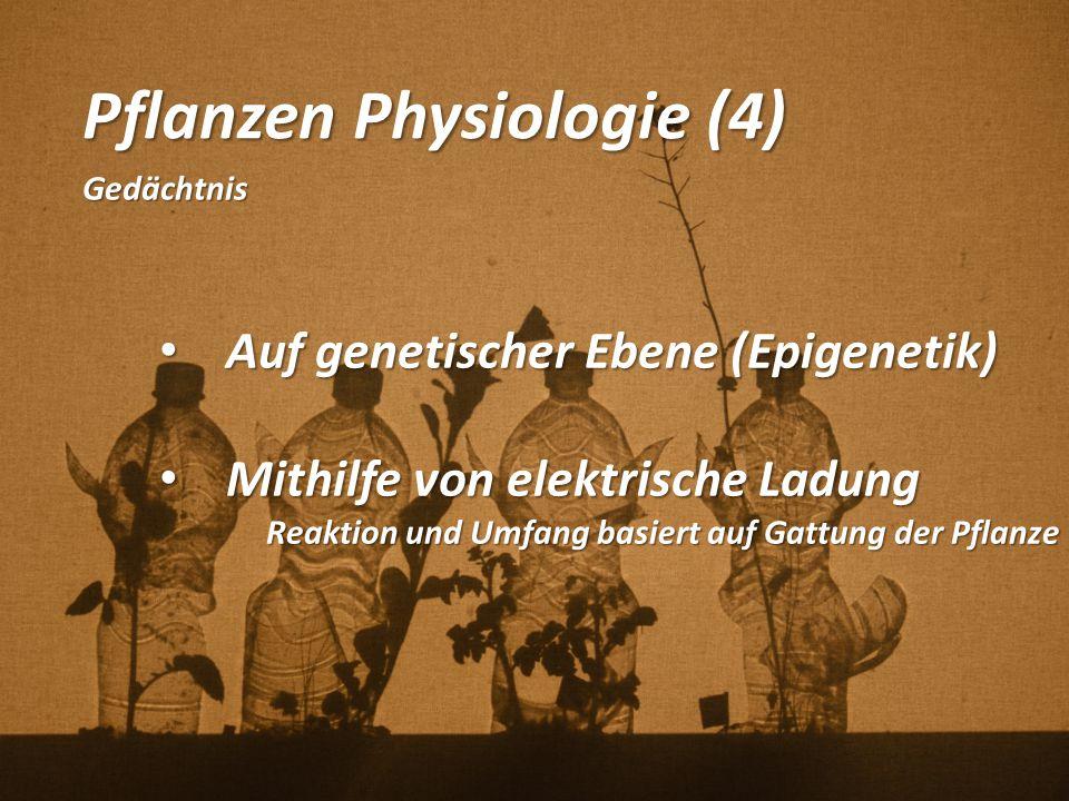 Pflanzen Physiologie (4)