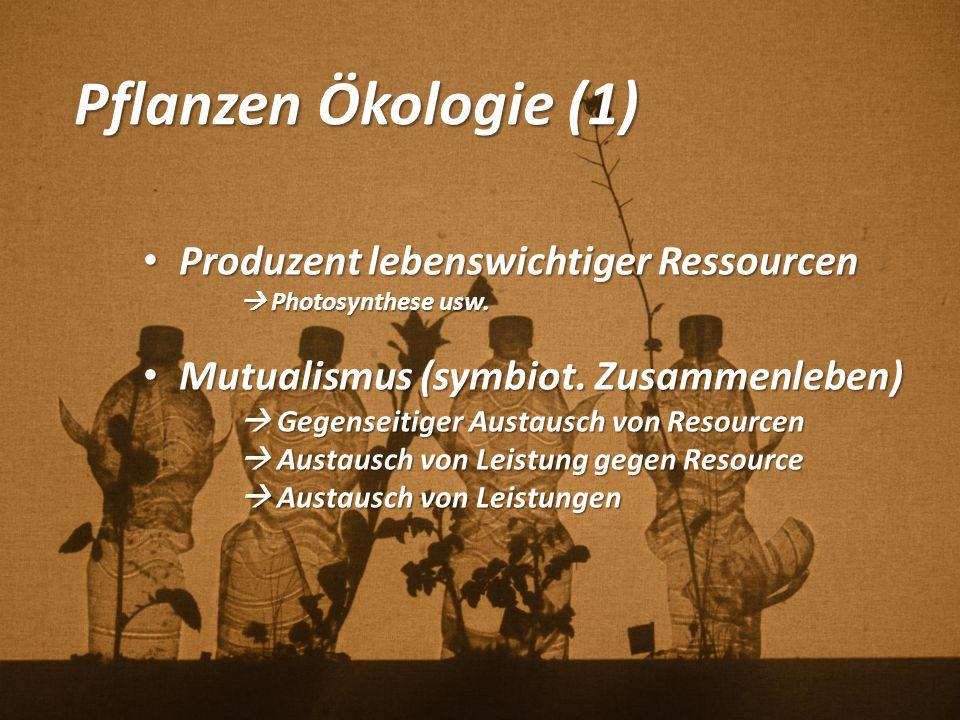 Pflanzen Ökologie (1) Produzent lebenswichtiger Ressourcen