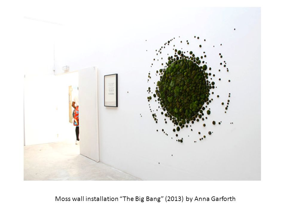 Moss wall installation The Big Bang (2013) by Anna Garforth