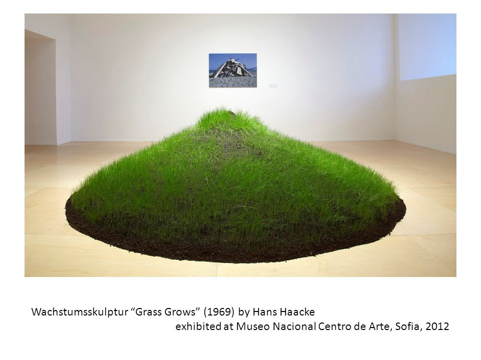 Wachstumsskulptur Grass Grows (1969) by Hans Haacke