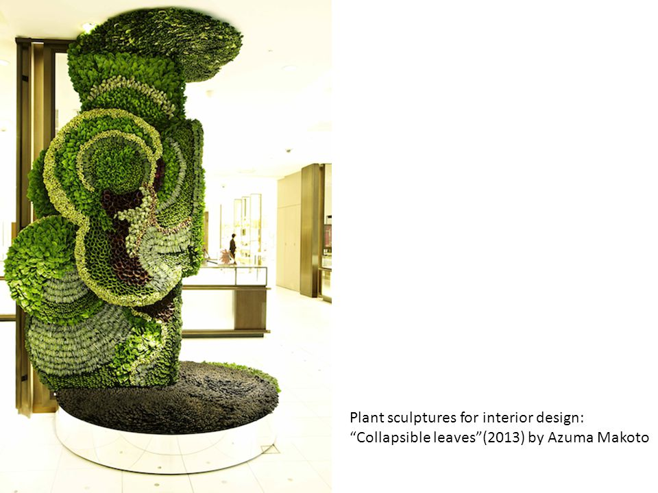 Plant sculptures for interior design: