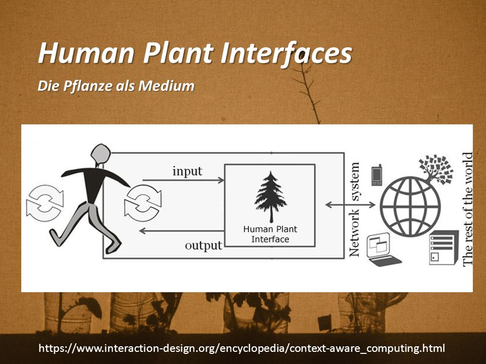 Human Plant Interfaces