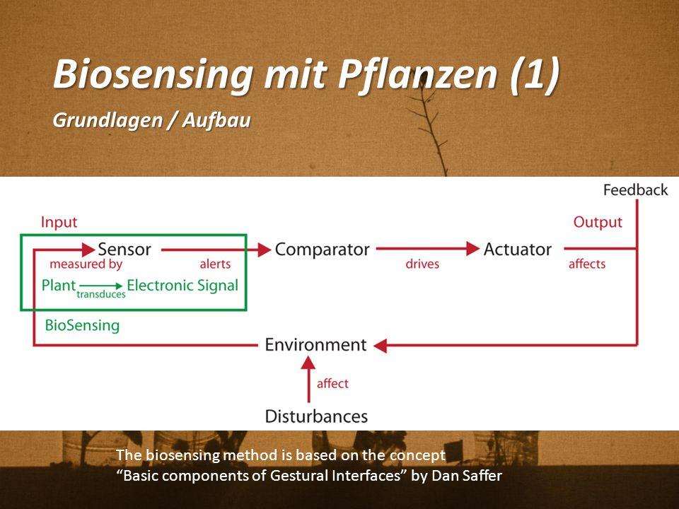 Biosensing mit Pflanzen (1)