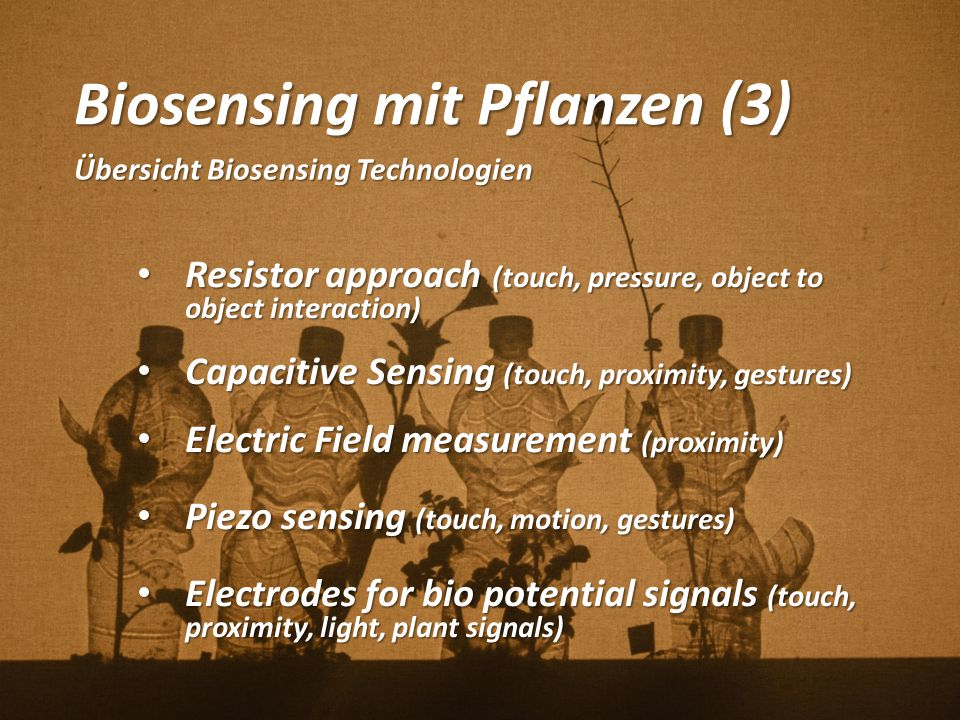 Biosensing mit Pflanzen (3)