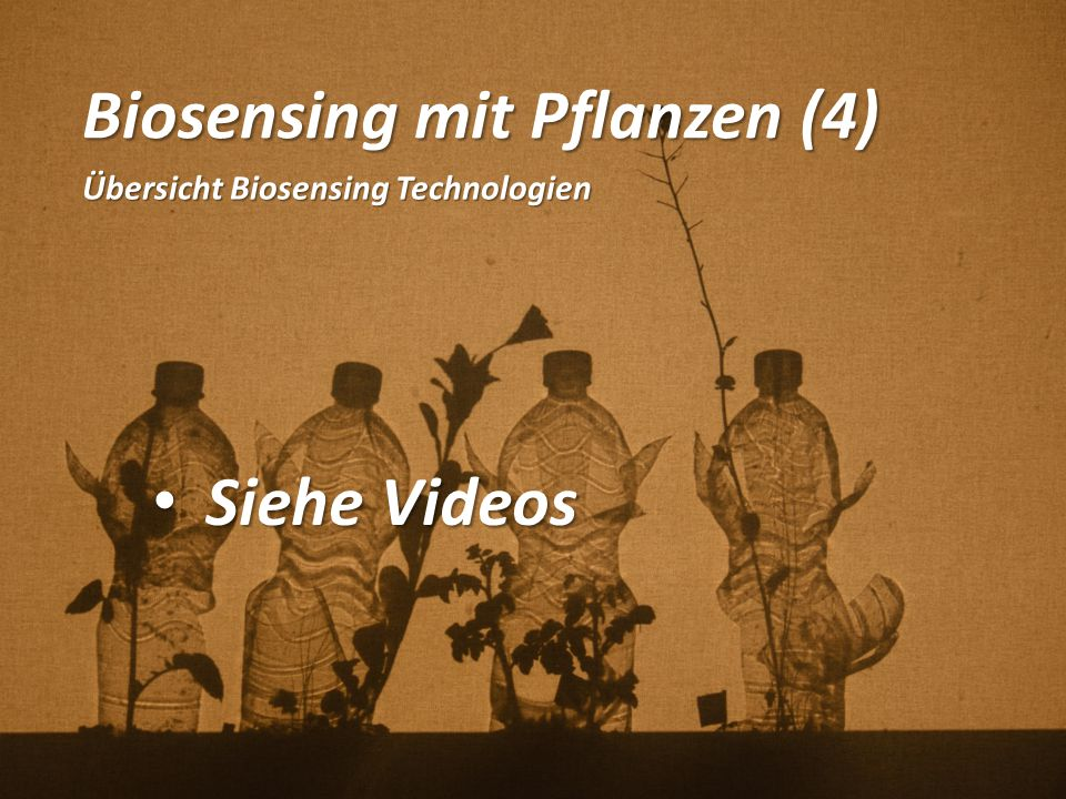 Biosensing mit Pflanzen (4)