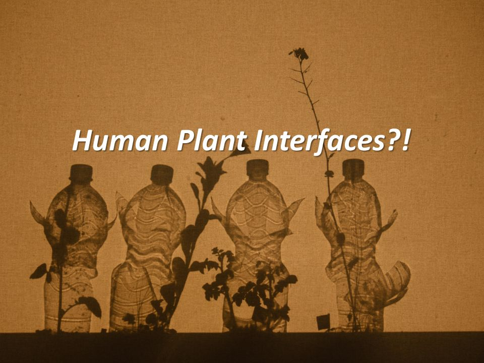 Human Plant Interfaces !