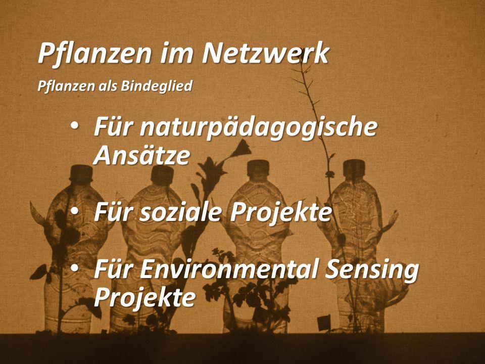Pflanzen im Netzwerk Für naturpädagogische Ansätze