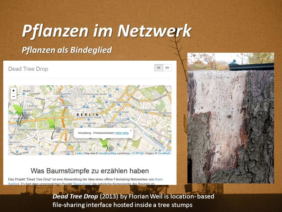 Pflanzen im Netzwerk Pflanzen als Bindeglied