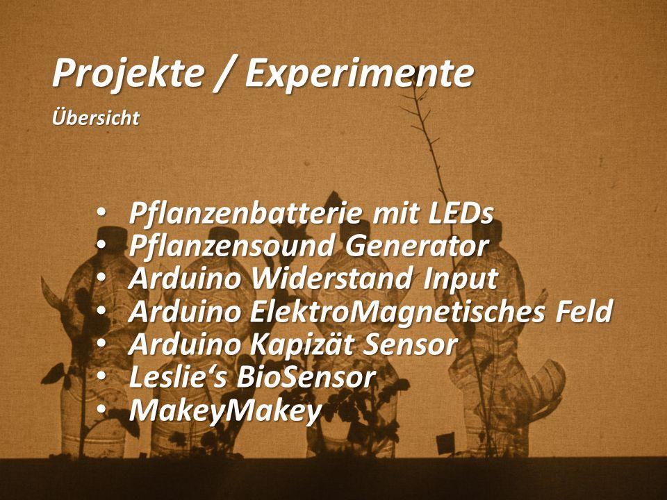 Projekte / Experimente
