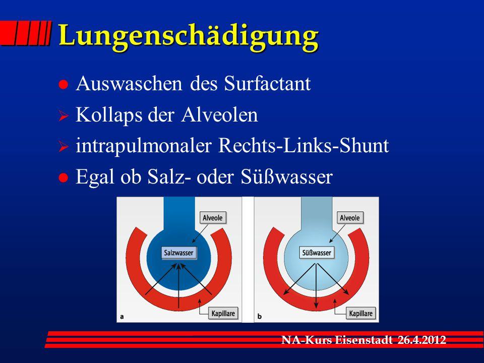 Lungenschädigung Auswaschen des Surfactant Kollaps der Alveolen