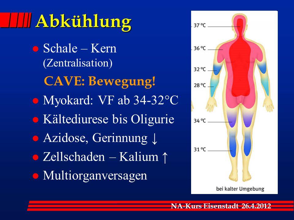 Abkühlung Schale – Kern (Zentralisation) Myokard: VF ab 34-32°C