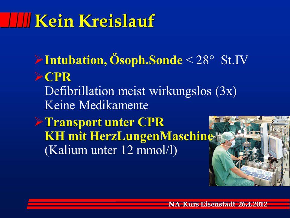 Kein Kreislauf Intubation, Ösoph.Sonde < 28° St.IV