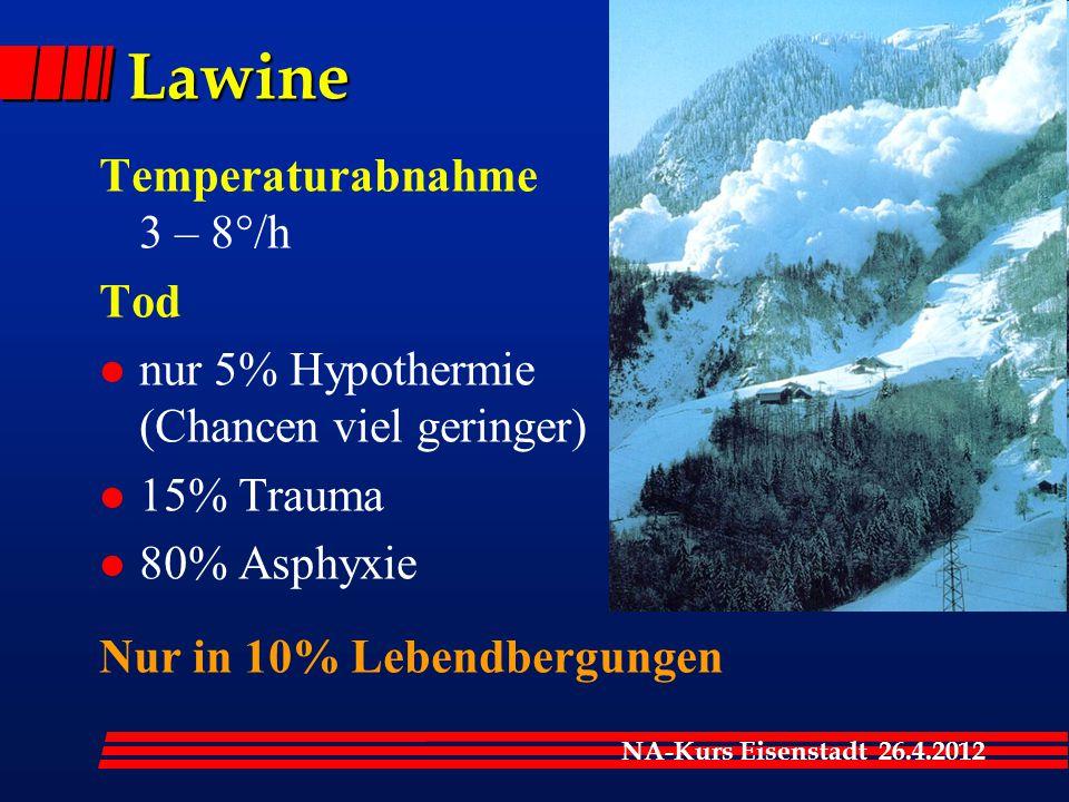 Lawine Temperaturabnahme 3 – 8°/h Tod