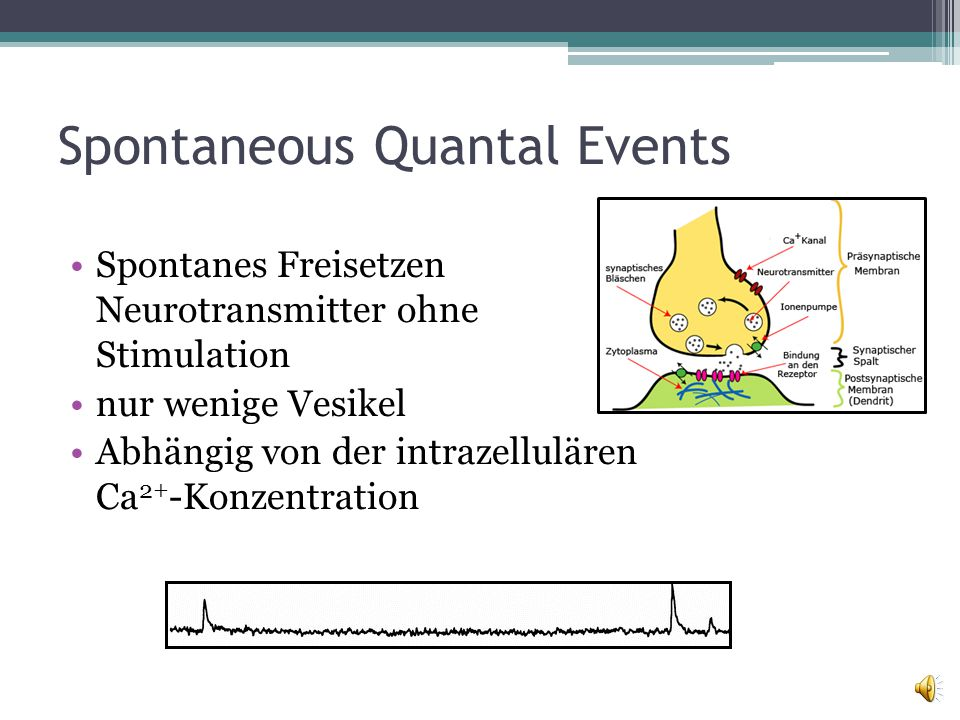 Spontaneous Quantal Events
