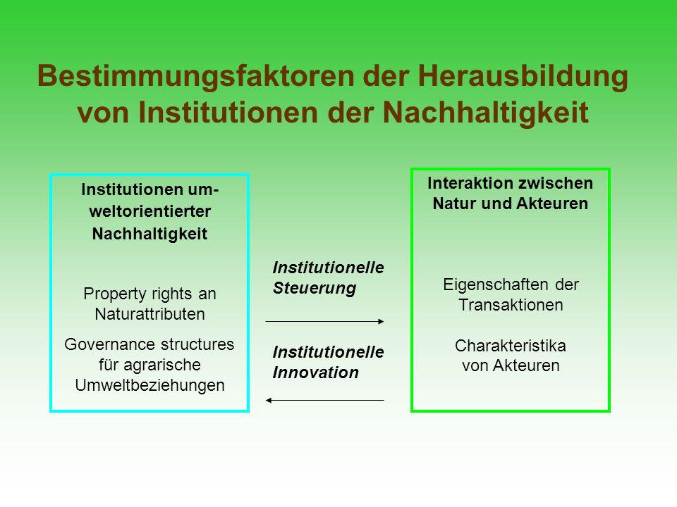 Bestimmungsfaktoren der Herausbildung von Institutionen der Nachhaltigkeit