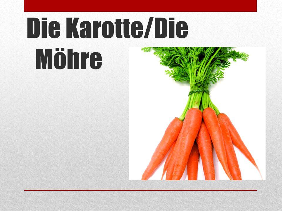 Die Karotte/Die Möhre