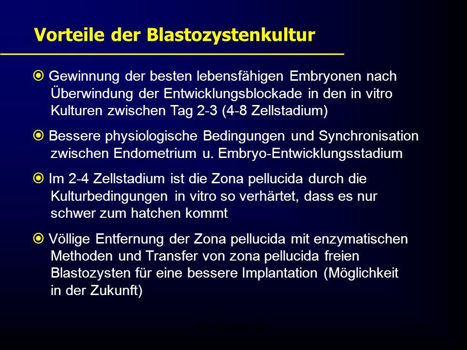 Vorteile der Blastozystenkultur