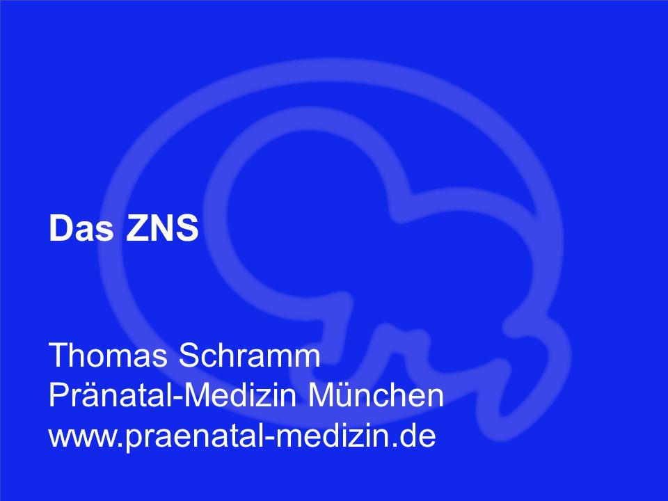Das ZNS Thomas Schramm Pränatal-Medizin München