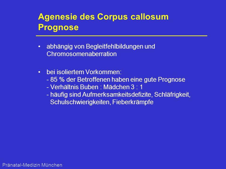 Agenesie des Corpus callosum Prognose