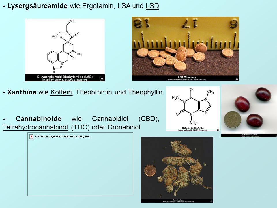 - Lysergsäureamide wie Ergotamin, LSA und LSD