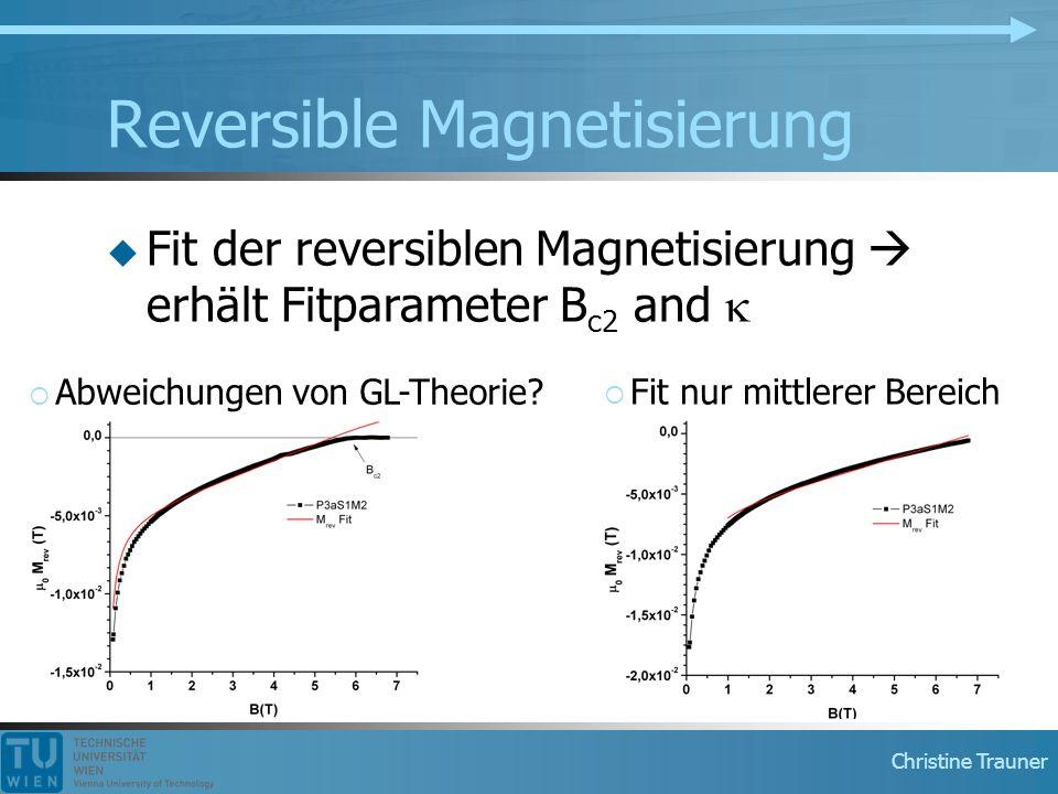 Reversible Magnetisierung