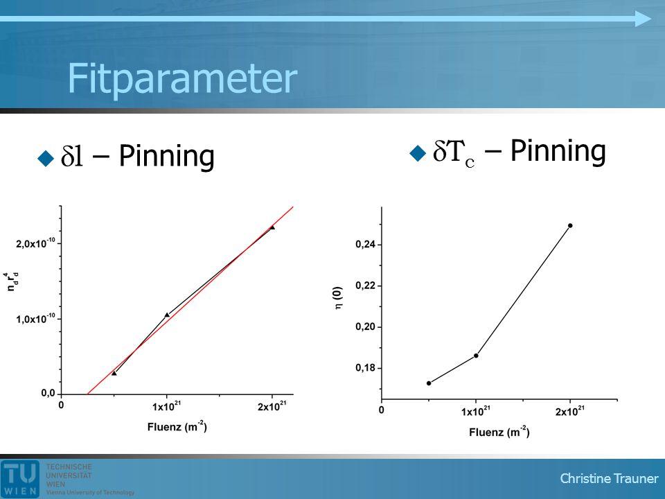 Fitparameter dTc – Pinning dl – Pinning Fitparam vgl. Mit paper