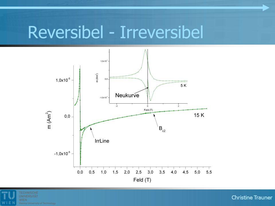 Reversibel - Irreversibel