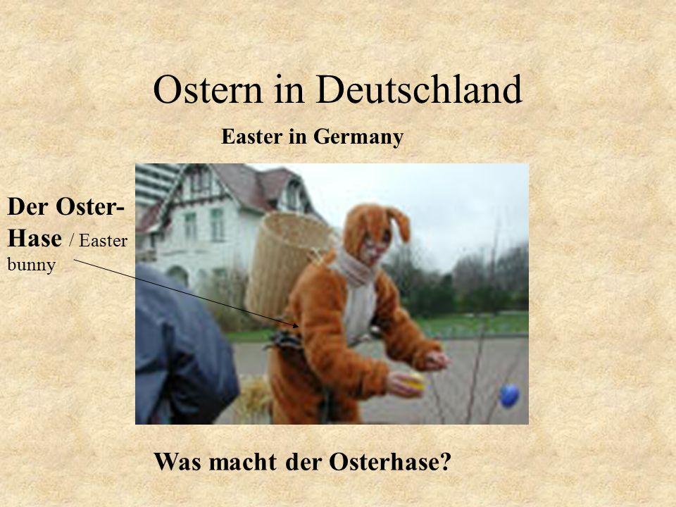 Ostern in Deutschland Der Oster- Hase / Easter
