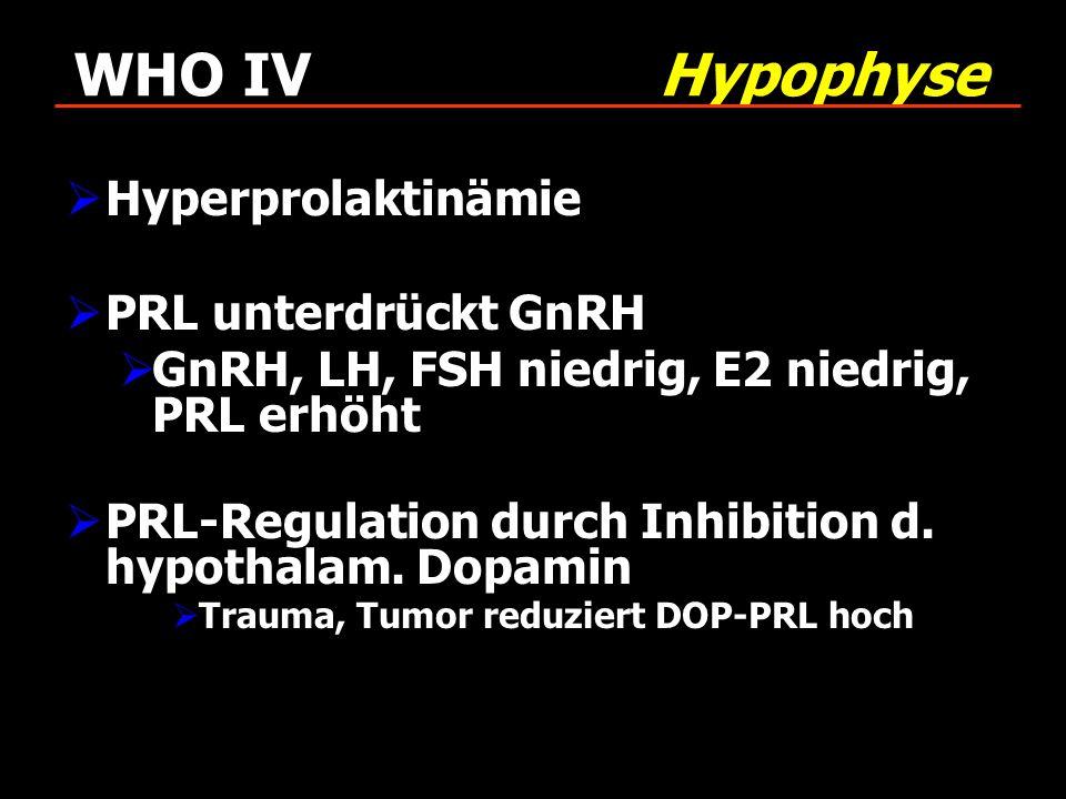 WHO IV Hypophyse Hyperprolaktinämie PRL unterdrückt GnRH