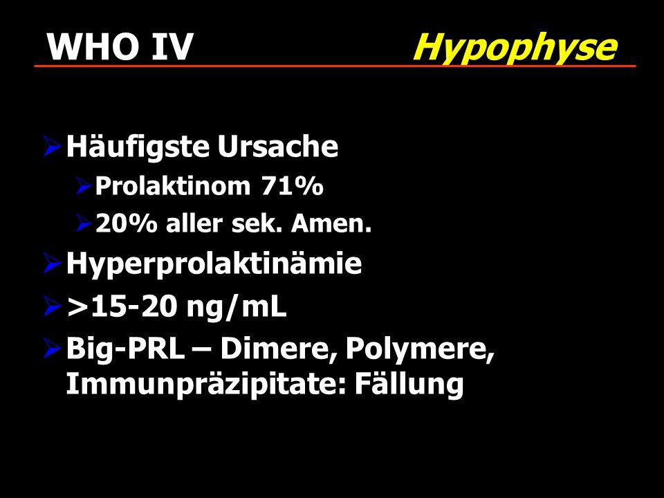 WHO IV Hypophyse Häufigste Ursache Hyperprolaktinämie >15-20 ng/mL