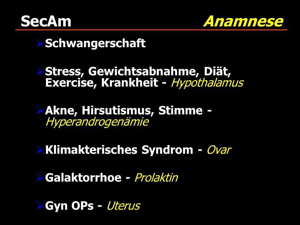 SecAm Anamnese Schwangerschaft