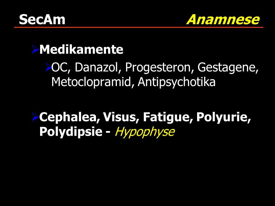 SecAm Anamnese Medikamente