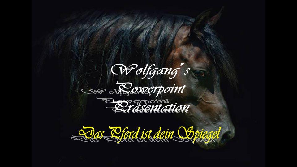 Das Pferd ist dein Spiegel