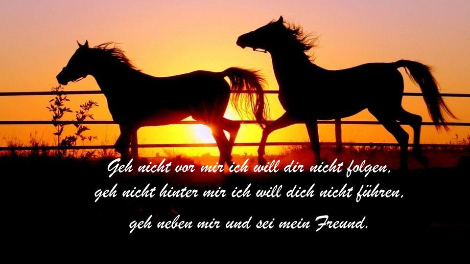 Geh nicht vor mir ich will dir nicht folgen, geh nicht hinter mir ich will dich nicht führen, geh neben mir und sei mein Freund.