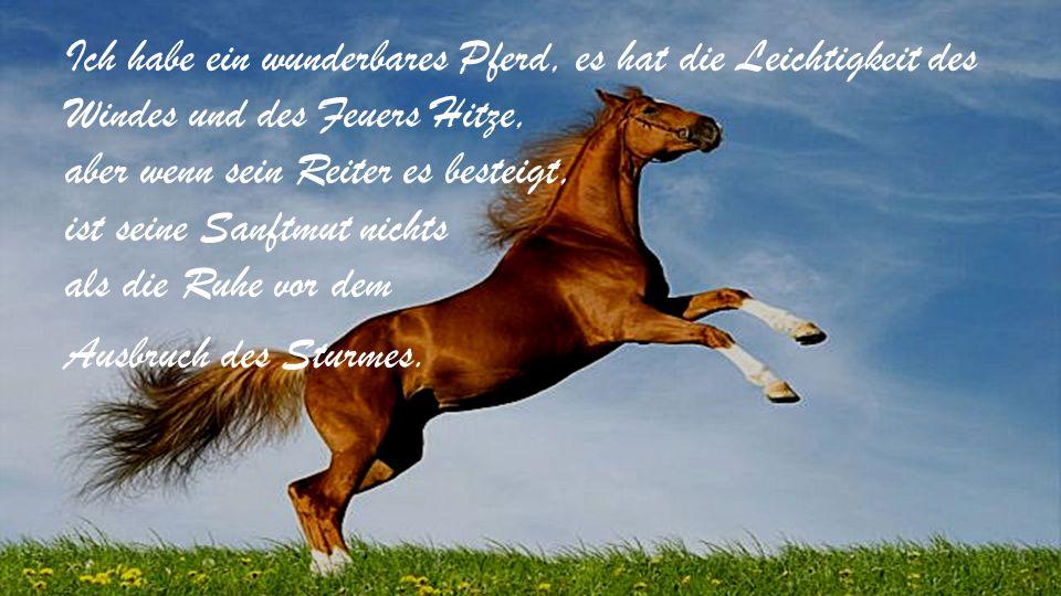Ich habe ein wunderbares Pferd, es hat die Leichtigkeit des Windes und des Feuers Hitze, aber wenn sein Reiter es besteigt, ist seine Sanftmut nichts als die Ruhe vor dem Ausbruch des Sturmes.