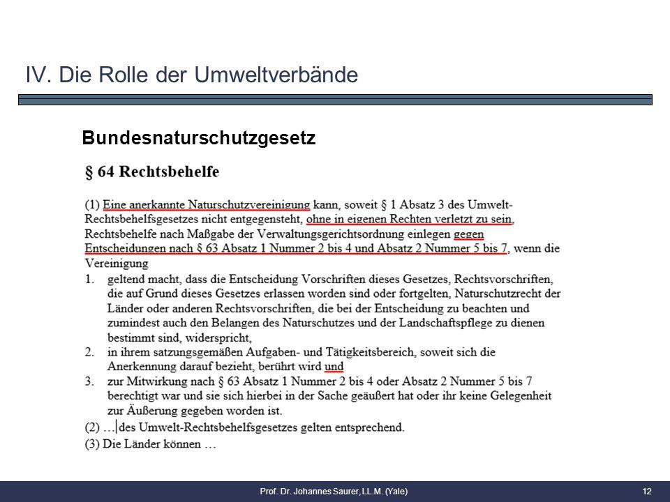 Prof. Dr. Johannes Saurer, LL.M. (Yale)