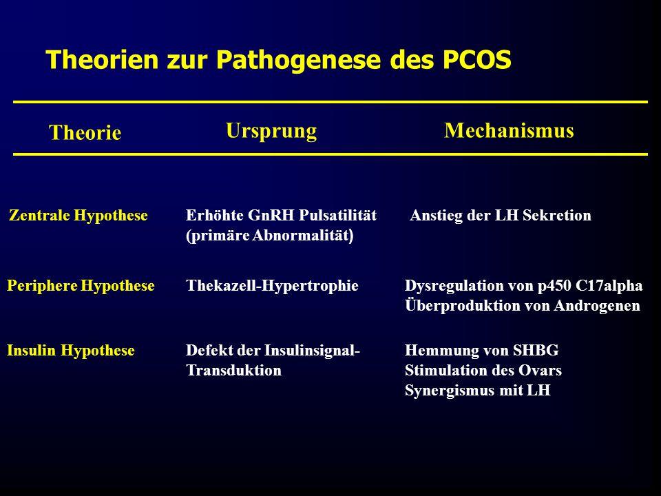 Theorien zur Pathogenese des PCOS