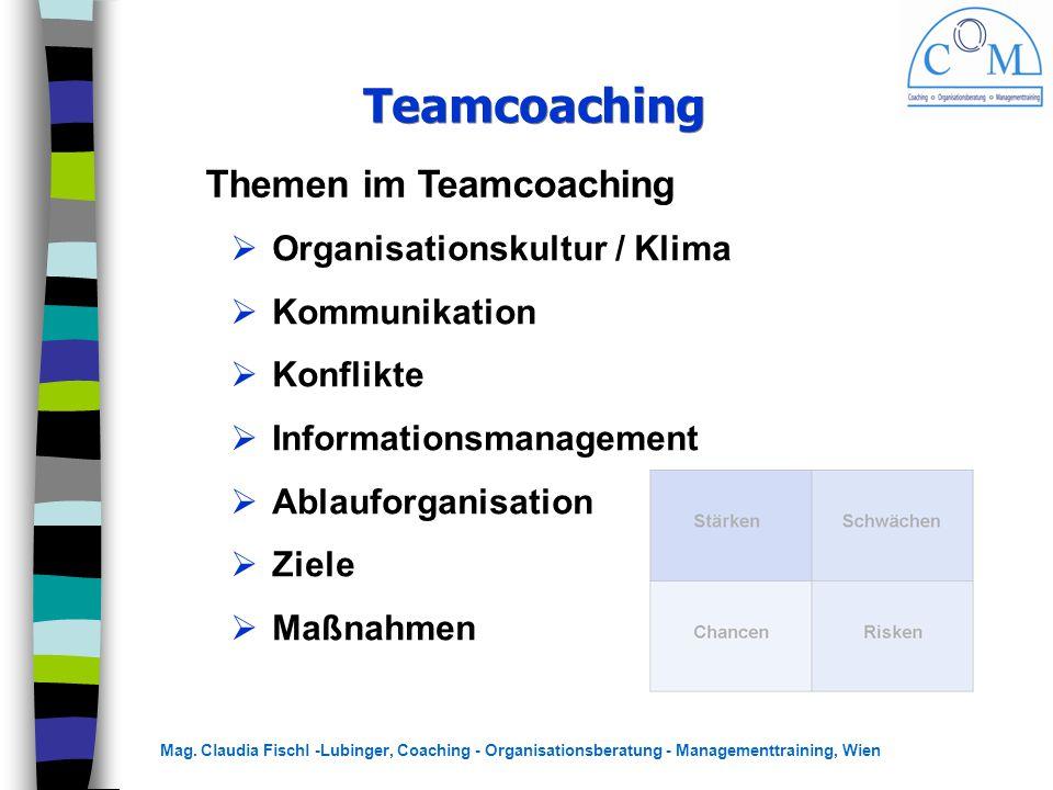 Teamcoaching Themen im Teamcoaching Organisationskultur / Klima