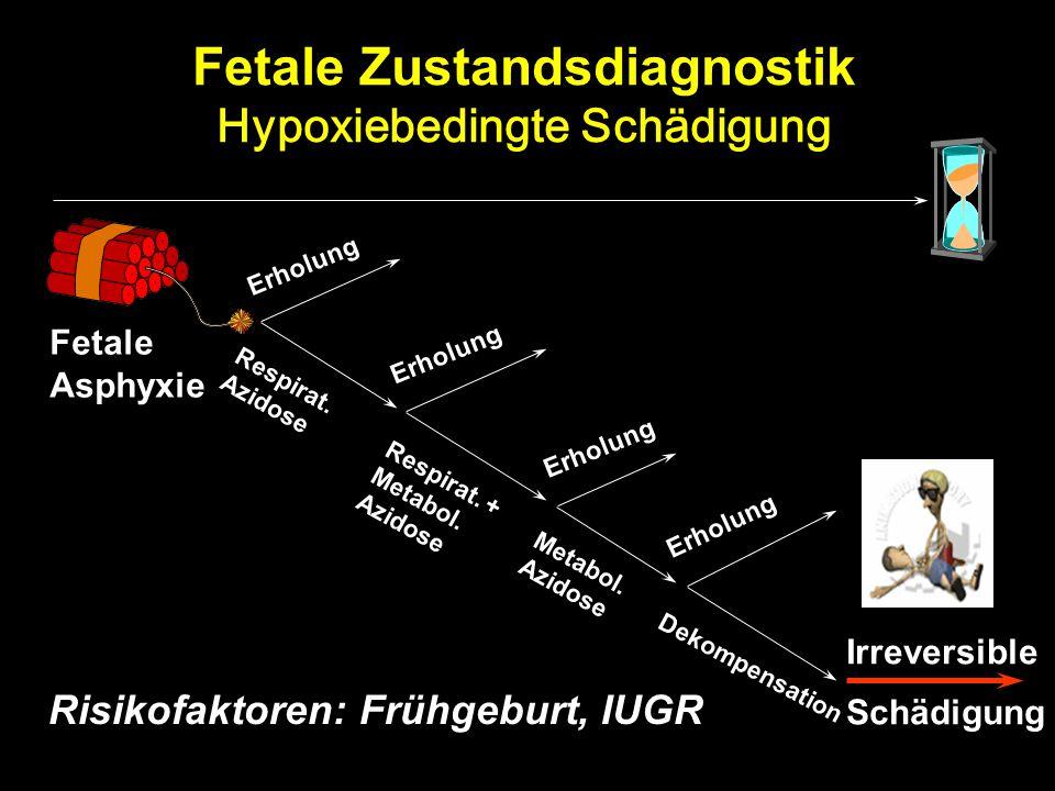 Fetale Zustandsdiagnostik Hypoxiebedingte Schädigung