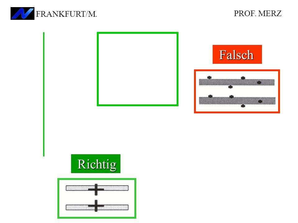 PROF. MERZ FRANKFURT/M. Falsch Richtig