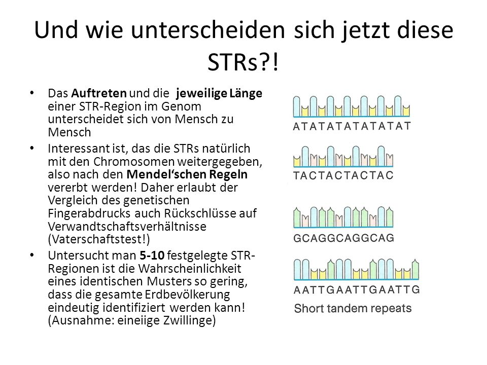 Und wie unterscheiden sich jetzt diese STRs !