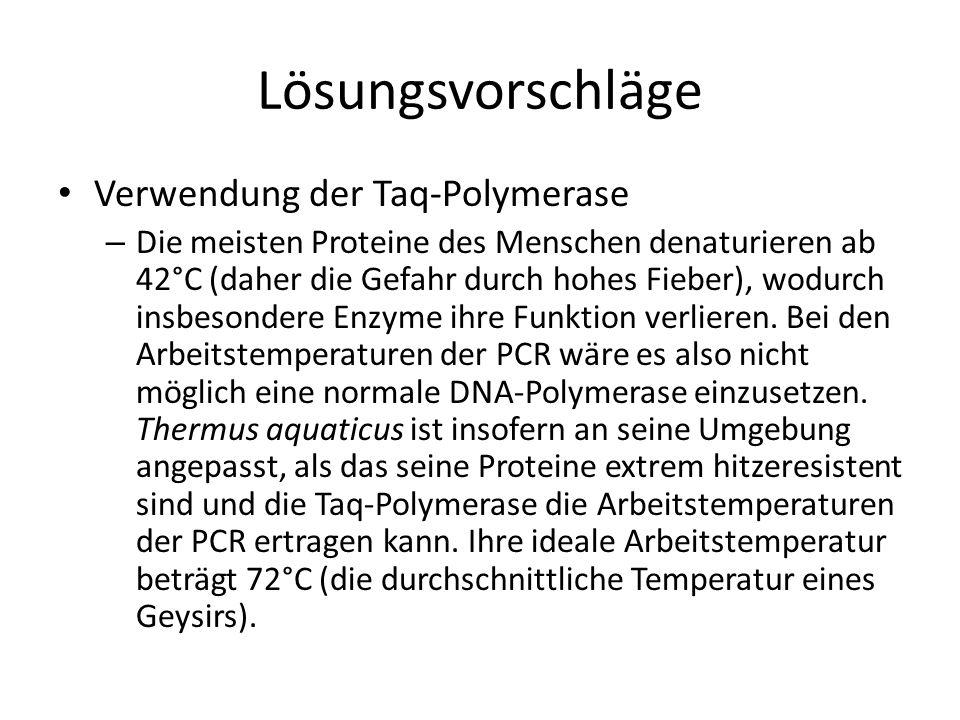 Lösungsvorschläge Verwendung der Taq-Polymerase
