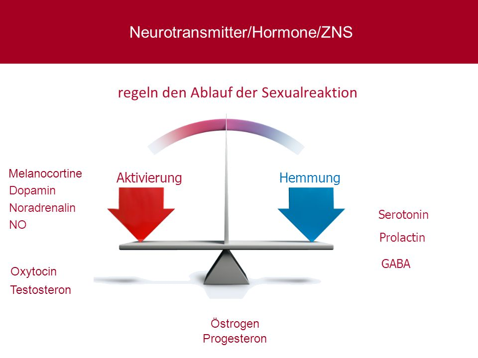 Neurotransmitter/Hormone/ZNS
