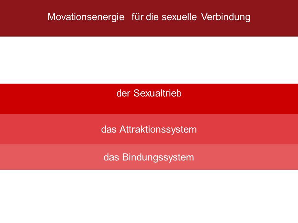 Movationsenergie für die sexuelle Verbindung