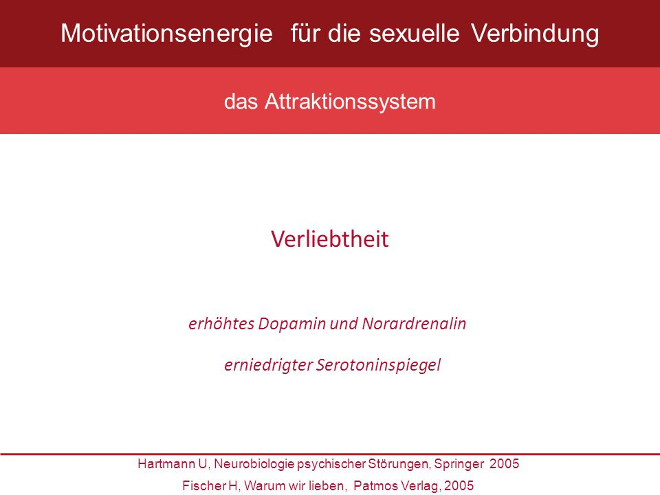 Motivationsenergie für die sexuelle Verbindung